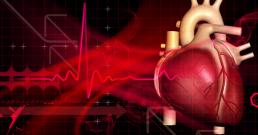 Най-ефективните добавки и начин на живот за добро здраве на сърцето