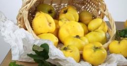 Забраненият плод - 7 невероятни здравни ползи от дюлята