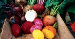 7 зеленчука, които пренебрегвате. А не трябва!