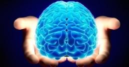 Засилване на паметта с правилно хранене