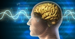 Гориво за мозъка: храни, които изострят паметта и мозъчната функция