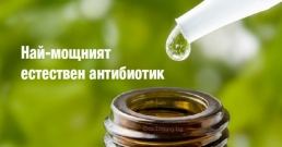 Тайните съставки на мощен естествен антиобиотик