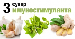 Три супер имуностимулиращи билки