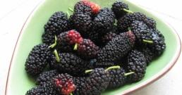 Чай от листа на черница срещу диабет, рак и много други