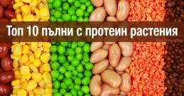 Топ 10 пълни с протеин растения за здравословна диета