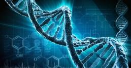 Чудото на еволюцията: хора с тежки генетични мутации остават здрави