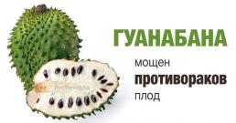 Гуанабана: мощен противораков плод
