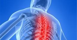Премахнете болките в гърба, ставите и краката само за 7 дни