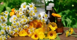 Рецепти за лековити тинктури