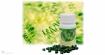 Спирулина - зеленото чудо, което пази от артрит, диабет и рак