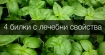 Четири билки, които имат противовъзпалително, болкоуспокояващо и противоспастично действие