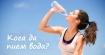 Кога и по колко да пием вода