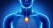 Сок, който активира щитовидната жлеза и метаболизма