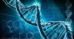 Здравословното ни остаряване зависи от гените