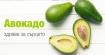 Авокадото са здравословни за сърцето плодове, които намаляват лошия холестерол и предоставят пълноценен протеин