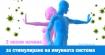 3 лесни начина за стимулиране на имунната система