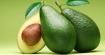 Семена от авокадо лекуват левкимия?