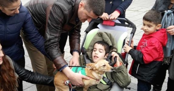 Първото куче - терапевт - помощник на 9-годишно момче от Бургас