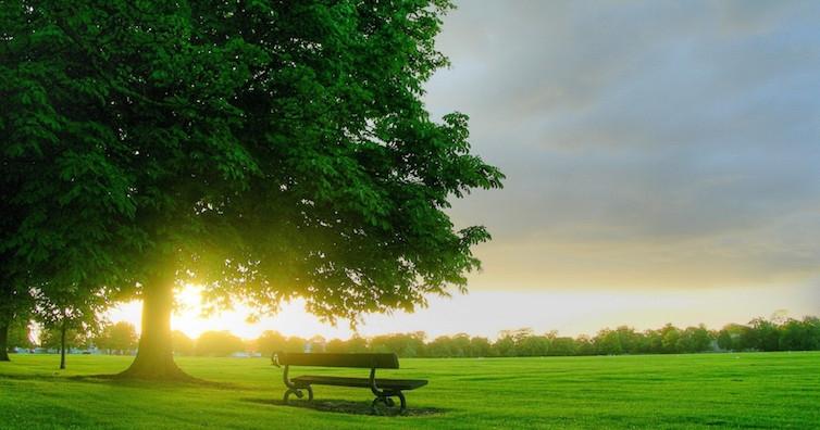 Слънцето е най-лечебно от 8 до 9 сутринта