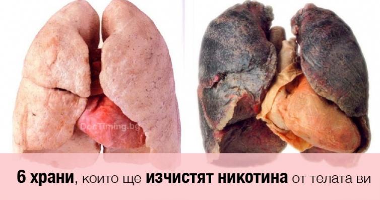 Внимание, бивши и настоящи пушачи: тези 6 храни може да изчистят никотина от телата ви